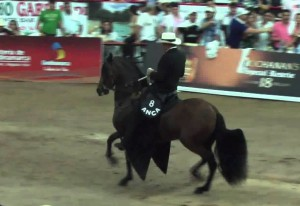 Mantra A&N  Campeona Reservada tocha  Agroexpo 2013