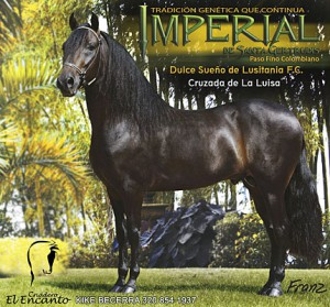 imperial430x400foro