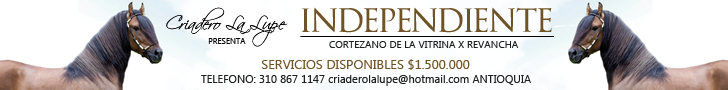 independiente728X90