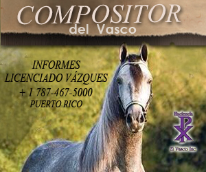 compositor300x250 (1)