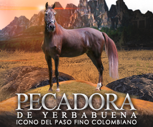 Pecadora