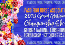 GRAND NATIONAL CHAMPIONSHIP SHOW 2018